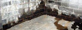 basement seepage