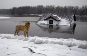 winter-basement-flooding