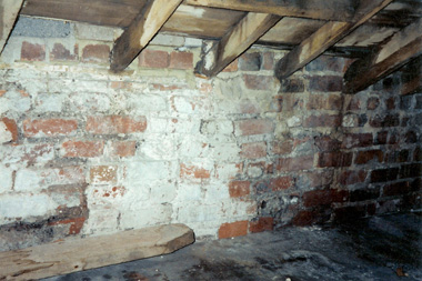 Dry Rot And Wet Rot Are Different Aquaguard Waterproofing