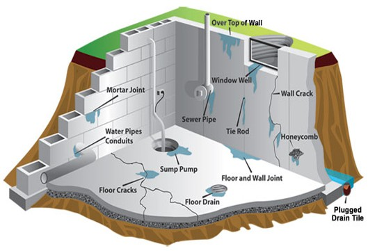 4 Health Hazards Basement Waterproofing Can Resolve U2013 Baltimore, MD